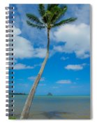 The Lone Palm Spiral Notebook