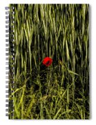 The Loneliness Of A Poppy Spiral Notebook