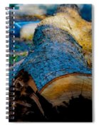 The Lonely Log Spiral Notebook