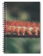 The Long Stride Spiral Notebook