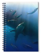 The Lord Of The Ocean Spiral Notebook
