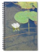 The Lotus Spiral Notebook