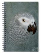 The Love Of A Gray Spiral Notebook