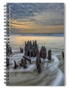 The Lowcountry - Botany Bay Plantation Spiral Notebook