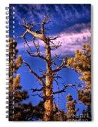 The Lurker Spiral Notebook