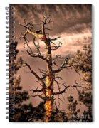 The Lurker II Spiral Notebook