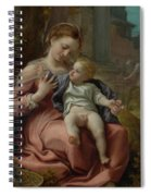The Madonna Of The Basket Spiral Notebook