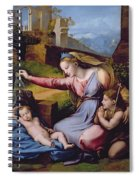 The Madonna Of The Veil Spiral Notebook
