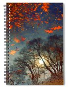 The Magic Puddle Spiral Notebook