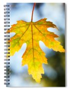 The Maple Leaf Spiral Notebook