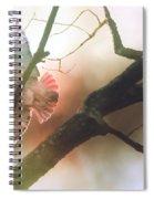 The Messenger Spiral Notebook