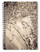 The Mighty Birch Tree  Spiral Notebook