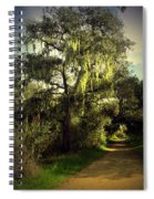 The Mighty Oaks Of Garland Ranch Park 2 Spiral Notebook