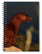 The Mink Spiral Notebook