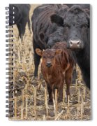 The Moms And Me Spiral Notebook