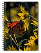 The Monarch And The Sunflower Spiral Notebook