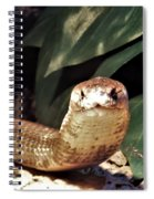 The Monocled Cobra Spiral Notebook