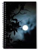 The Moon - La Luna 12 Spiral Notebook