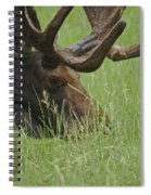 The Moose Spiral Notebook