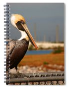 The Most Beautiful Pelican Spiral Notebook