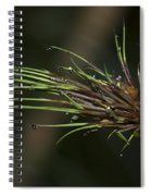 The Most Fabulous Spa..  Spiral Notebook