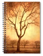 The Mother Tree Spiral Notebook