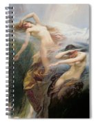 The Mountain Mists Spiral Notebook