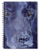 The Muse Spiral Notebook