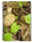 The Mushroom Trio Spiral Notebook