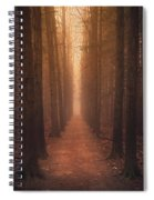 The Narrow Path Spiral Notebook