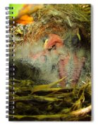 The Next Generation Hatched Spiral Notebook