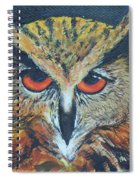 The Night Owl  Spiral Notebook