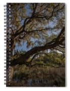The Oak By The Side Of The Road Spiral Notebook