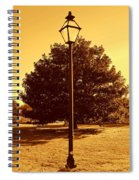 The Old Lantern In The Park Spiral Notebook
