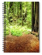 The Old Man In The Forest Spiral Notebook