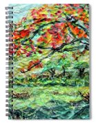 The Old Maple Tree Spiral Notebook