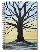 The Stained Old Oak Tree Spiral Notebook