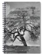 The Old Oak Tree Standing Alone  Spiral Notebook