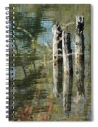 The Old Swimming Hole Spiral Notebook
