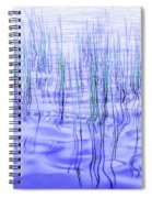 The Ongoing Reeds Experiment Spiral Notebook