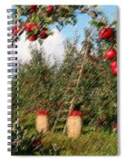 The Orchard Spiral Notebook