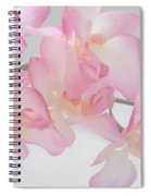 The Orchid Spiral Notebook