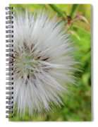 The Original Beauty Of Who You Are Spiral Notebook