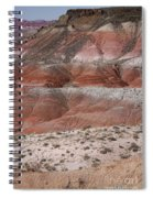 The Painted Desert  8020 Spiral Notebook