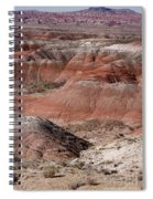 The Painted Desert  8024 Spiral Notebook