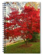 The Painted Leaves Spiral Notebook