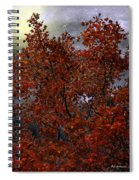 The Passion Of Autumn Spiral Notebook