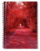 The Path 2 Spiral Notebook