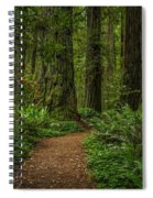 The Path Less Taken Spiral Notebook