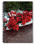 The Path To Christmas - Poinsettias, Trees, Snow, And Walkway Spiral Notebook